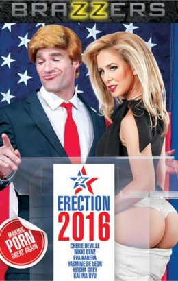 ZZ Erection 2016