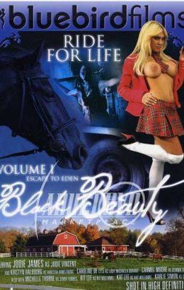 Black Beauty 1: Escape To Eden
