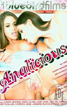 Analicious