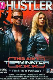 This Ain't Terminator XXX: This Is A Parody