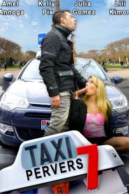 Taxi Pervers 7