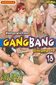 Vollgewichste Gangbang Schlampen 18