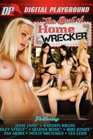 The Best Of Homewrecker