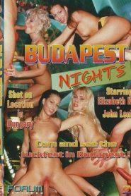 Budapest Nights