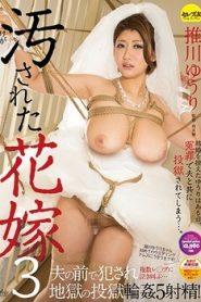 CESD-480 Oshikawa Yuri – The Defiled Bride 3 Yuri Oshikawa