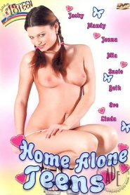 Home Alone Teens