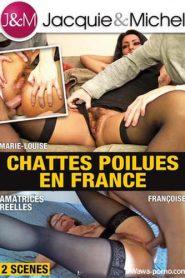 Chattes poilues en France