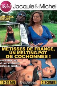 Metisses de France, un Melting-Pot de Cochonnes !