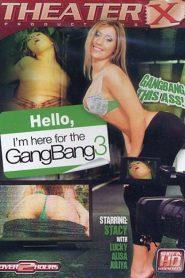 Hello I'm Here For The Gang Bang 3