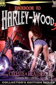 Backdoor To Harley-Wood 3