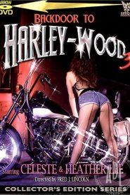 Backdoor To Harley-Wood 3