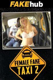 Female Fake Taxi 2