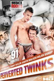 Perverted Twinks