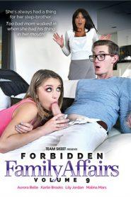 Forbidden Family Affairs 9