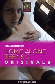 Home Alone Teens 2