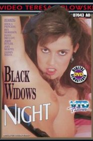 Black Widows Night