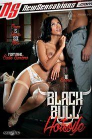 Black Bull / Hotwife