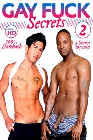 Gay Fuck Secrets 2