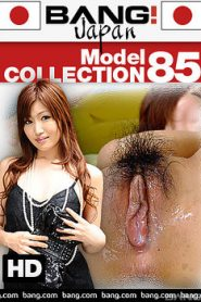 Model Collection 85