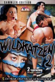 Wildkatzen 2