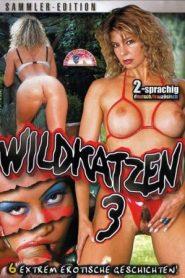 Wildkatzen 3