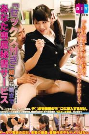 """DIY-001 Exclusive Secretarial Services To Your Evening From """"sex With"""" Morning"""