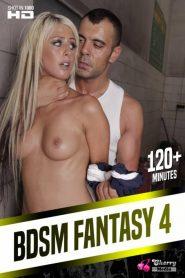 BDSM Fantasy 4