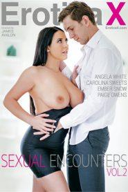 Sexual Encounters 2