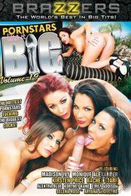 Pornstars Like It Big 19