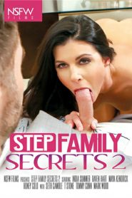 Step Family Secrets 2